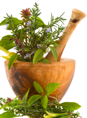 Herbal Correspondences for Spells - Wiccan Spells