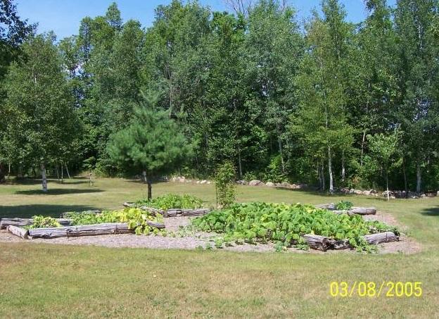 Wiccan orgonite talismans - Garden pics