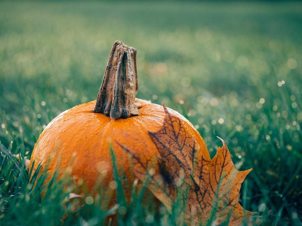 samhain food pumpkin