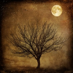 full moon magick