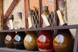 herbs in magic spells
