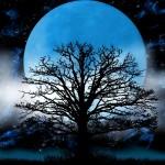full moon spells 1
