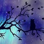 lucid dreaming - animal familiar