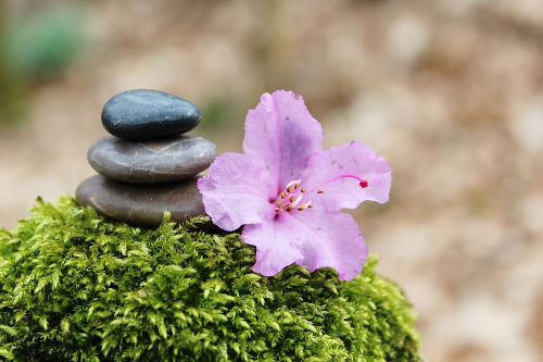 wiccan meditation - flower