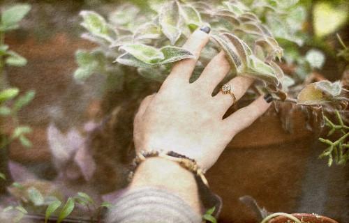 hedge witchery