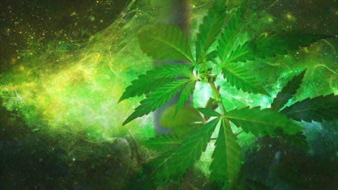 spiritual use of marijuana
