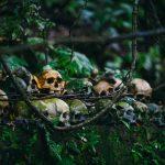 Skulls - Death Gods